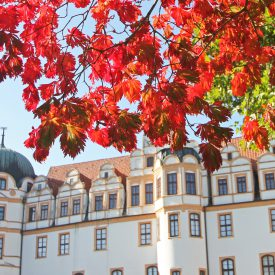 Celler Schloss im Herbst c) Celle Tourismsu und Marketing GmbH
